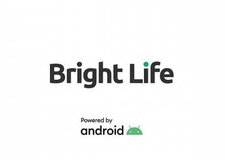 Bright Life flash file firmware